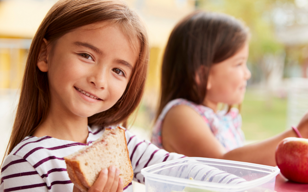 How to choose the best school lunch box for your child!
